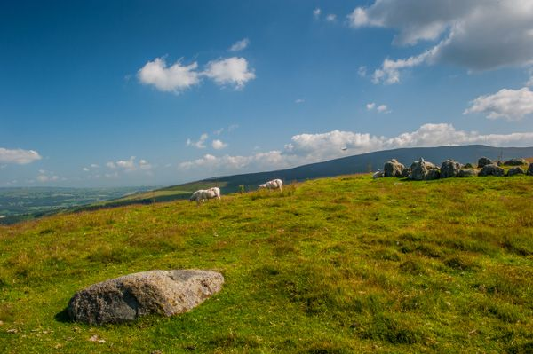 Moel Ty Uchaf Stone Circle photo, The outlying stone