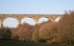 Moorswater Viaduct (c) Tony Atkin