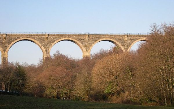 Liskeard photo, Moorswater Viaduct (c) Tony Atkin