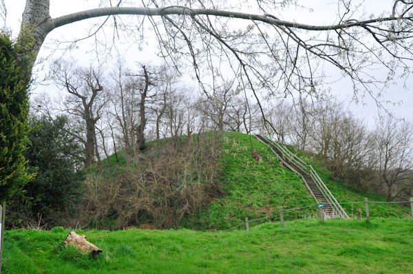 Mount Bures Castle Motte photo, The Castle Mound