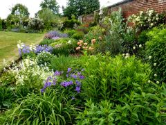 Colourful herbaceous borders (c) Pam Fray