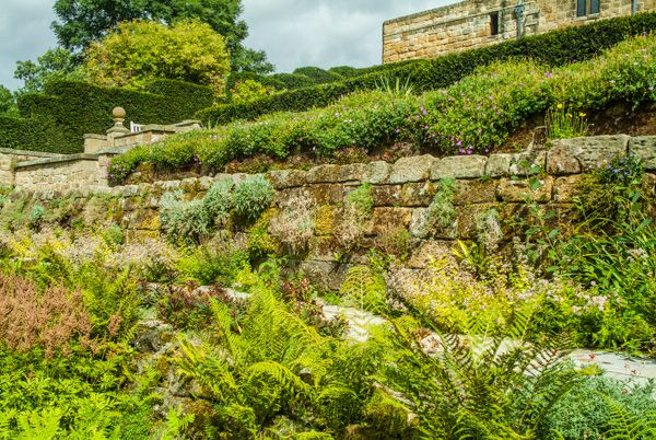 Mount Grace Priory photo, Mount Grace House gardens