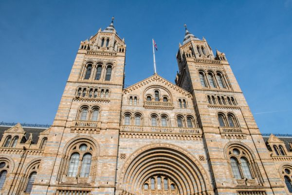 How To Get To Natural History Museum By Tube