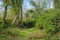 Nevern Castle , Earthwork bank and ditch