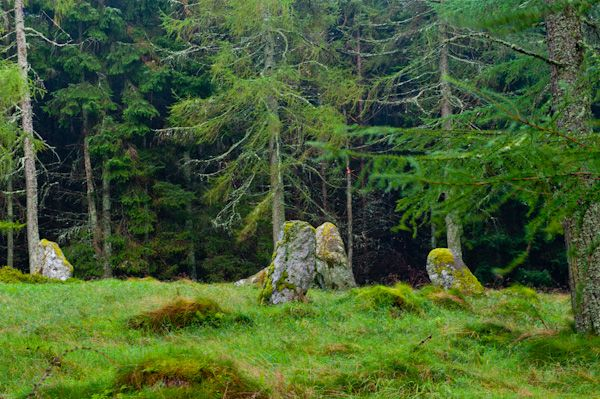 Nine Stanes Stone Circle photo, The circle from a distance