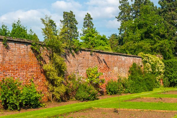 Normanby Hall photo, The walled garden