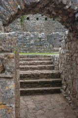 The cellar vaulting and stairs