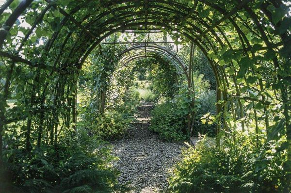 Otley Hall photo, A shady garden tunnel