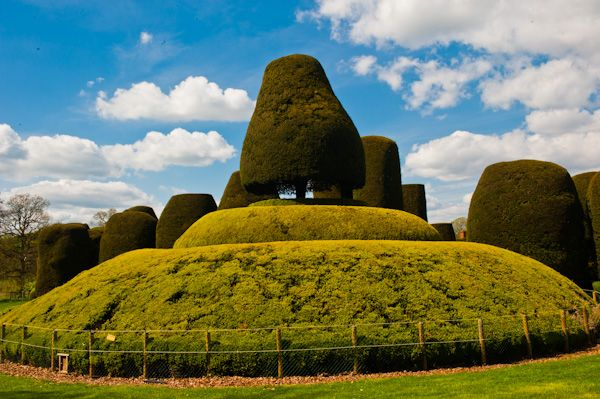 Packwood House photo, Sermon on the Mount topiary