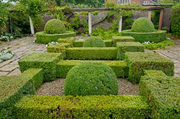 Peover Hall photo, Garden hedges