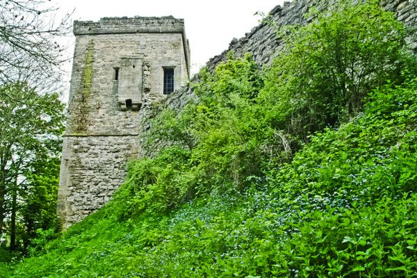 Pickering Castle photo, Diate Tower and curtain wall