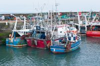 Boats in Pittenweem harbour