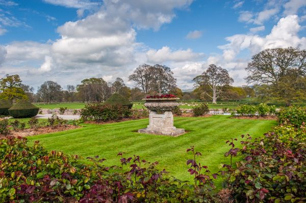 Powderham Castle photo, In the rear gardens
