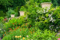 Renishaw Hall, A colourful summer terrace border