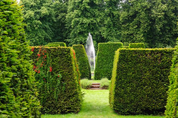 Renishaw Hall photo, Clipped hedges lead to a lovely fountain