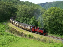 Vale of Rheidol Railway steam train
