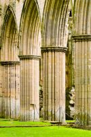Abbey church columns
