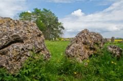 Rollright Stones, Standing stones in the main circle