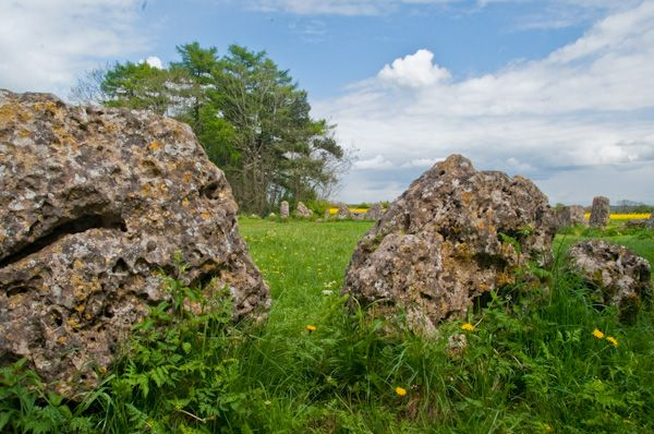 Rollright Stones photo, Standing stones in the main circle