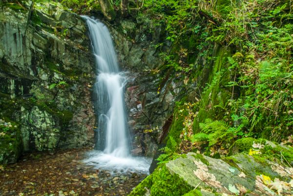 Rydal photo, A small waterfall running into Rydal Water