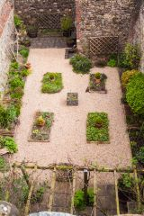 Recreation of a medieval garden in the courtyard