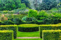 Scampston Hall, Formal gardens near the house