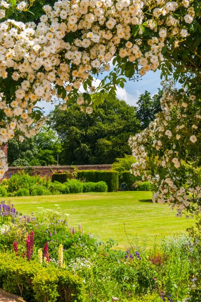 Scawby Hall photo, The gardens in summer