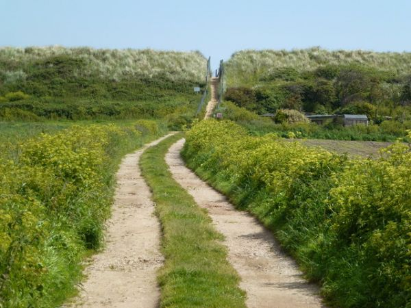Sea Palling photo, The path to the beach (c) Richard Humphrey