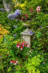 St Mary's House, A colourful garden urn