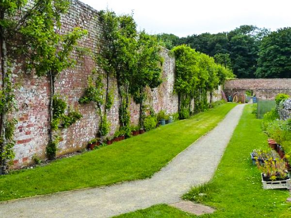 Stackpole Estate photo, The walled garden (c) Robin Drayton