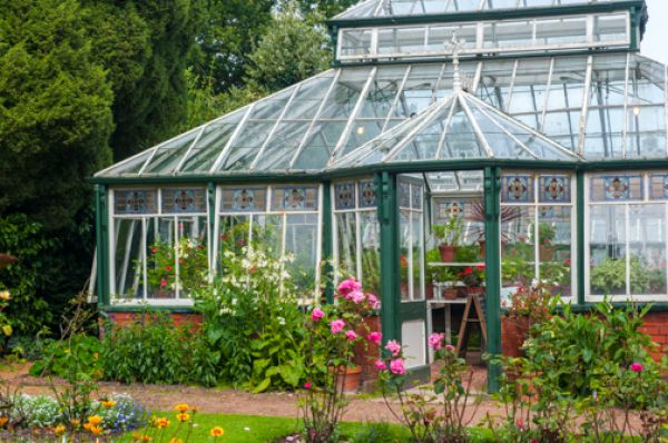 Sunnycroft photo, Edwardian greenhouses beside the house