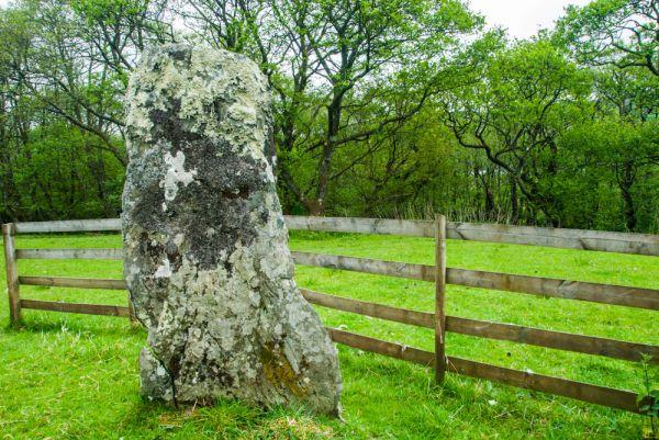 Avinagillan Standing Stone photo, The stone and protective fence