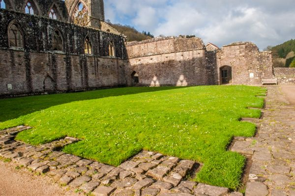 Tintern Abbey photo, The cloister green