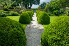 Tintinhull Garden, Garden path and topiary