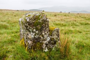 Trecastle Mountain (Y Pigwyn) Stone Circles