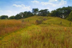 Uley Long Barrow (Hetty Pegler's Tump)