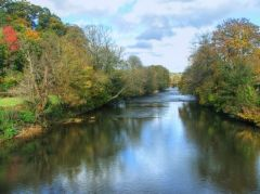 Umberleigh, The River Taw at Umberleigh (c) Barrie Cann
