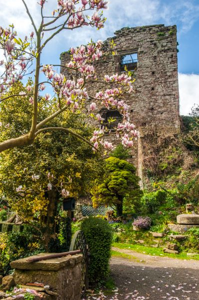 Usk Castle photo, The Great Tower in Spring