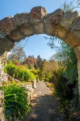 Ventnor Botanic Garden, The South African Terrace