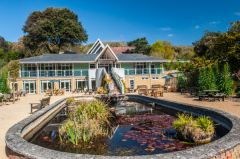 Ventnor Botanic Garden, The carp pond and visitor centre