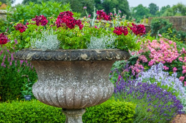 Wakehurst Place photo, An urn in the formal gardens