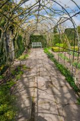 Waterperry Gardens, A shaded walk in spring