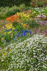 Waterperry Gardens, Colourful spring flowers