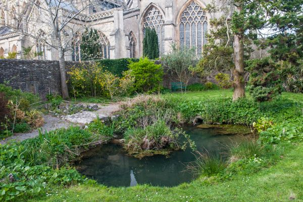 Wells Bishop's Palace photo, St Andrew's Holy Well