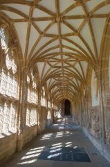 Wells Cathedral, The cloisters