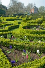 Westbury Court Garden, Formal clipped hedges