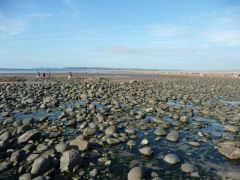 Westward Ho!, The pebble beach at Westward Ho! (c) Lewis Clarke
