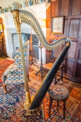Harp in the gallery