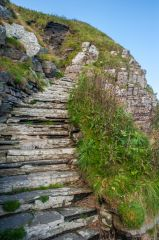 Whaligoe Steps, What goes down must go back up!