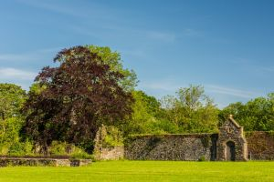 Whitland Abbey